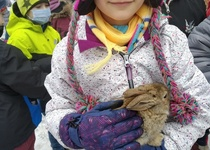Výprava za malými králíčky